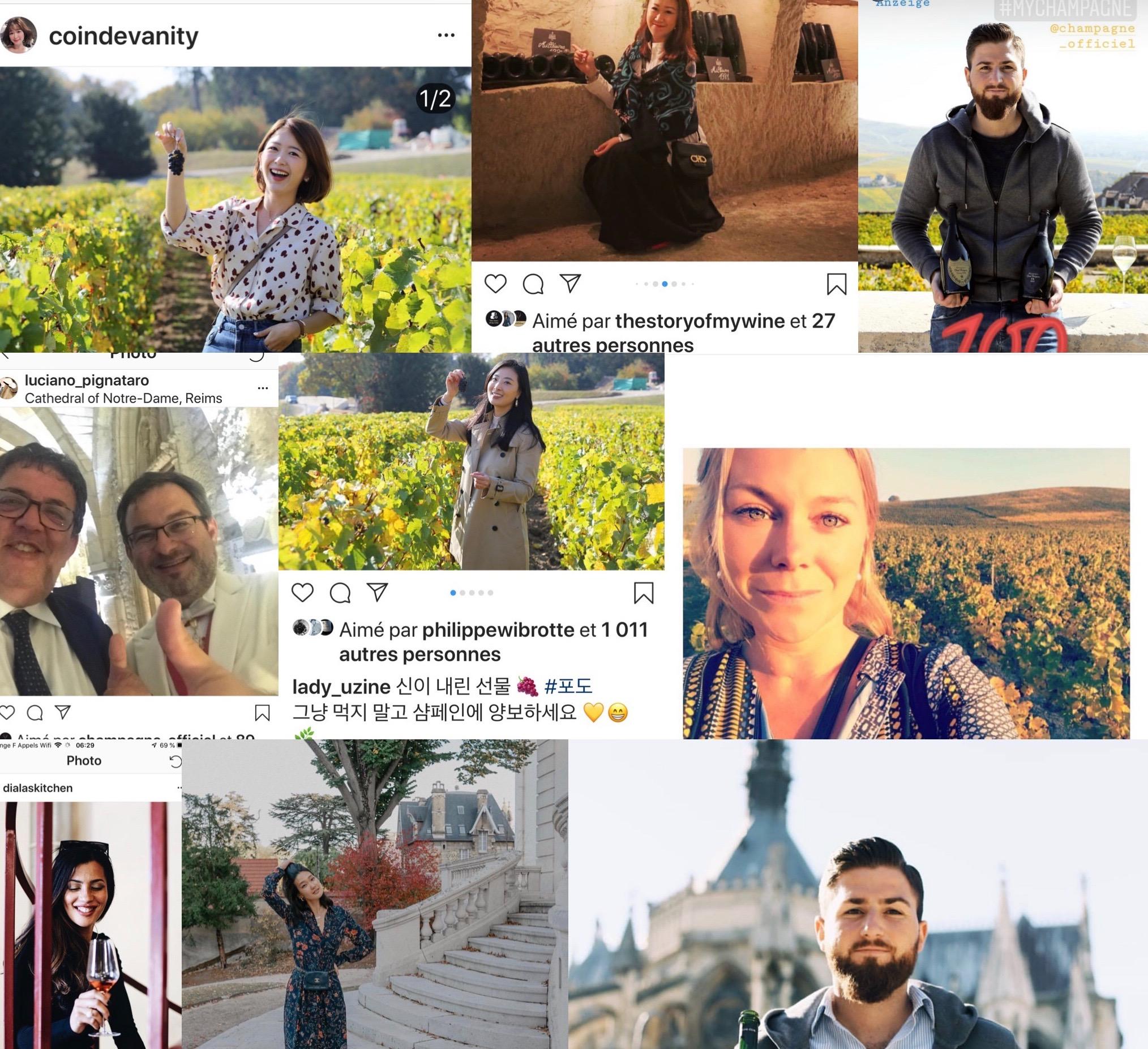 Des influenceurs du monde entier reçus en Champagne par le Comité Champagne.