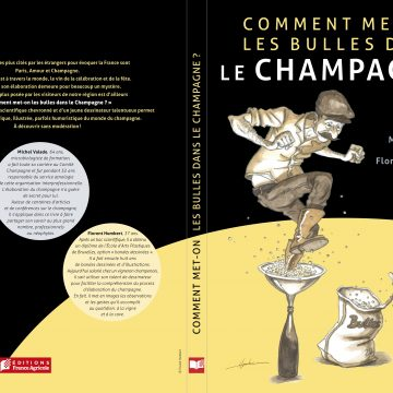 Comment met-on les bulles dans le champagne ? Un livre signé par Michel Valade (Comité Champagne)